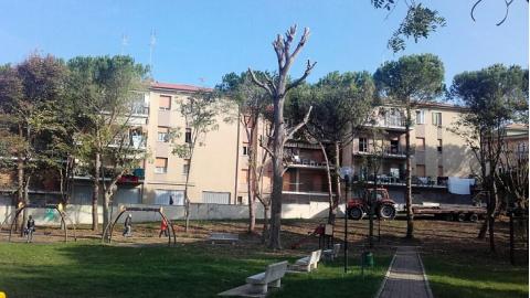 Ufficio Verde Comune Di Ancona : Manutenzione verde concluso intervento al parco del gabbiano