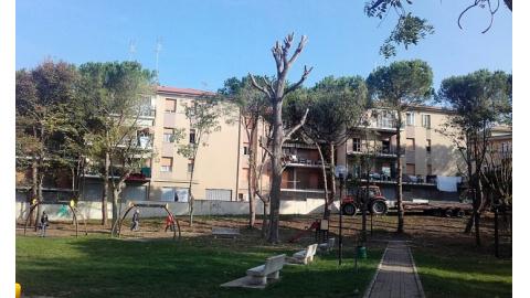 Ufficio Verde Comune Ancona : Manutenzione verde concluso intervento al parco del gabbiano