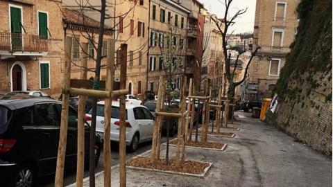 Ufficio Verde Comune Di Ancona : Arcidiocesi di ancona osimo avvicendamenti e nomine di sacerdoti